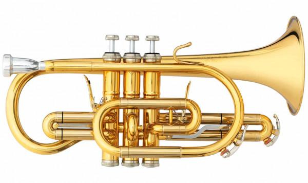B&S Kornett 3142/2-GL Brochon